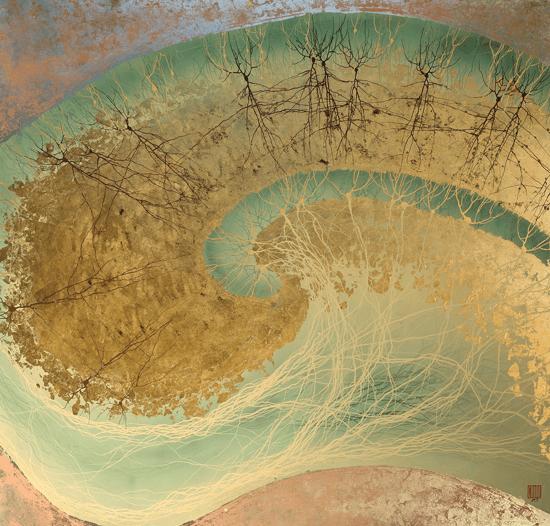 Карма мозга
