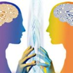 Основы перцепции – бесплатный мастер-класс для массажистов, остеопатов, косметологов, психологов